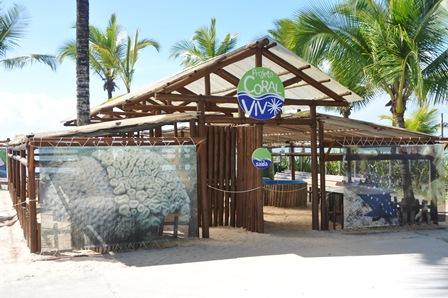 Projeto Coral Vivo | Foto Reprodução